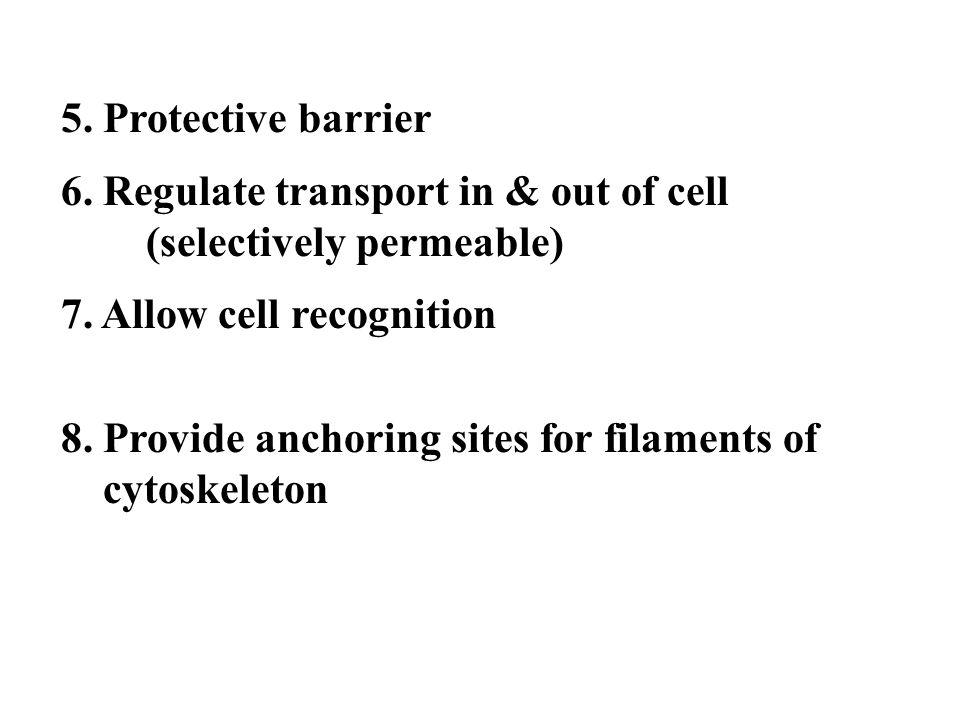 Membrane Components
