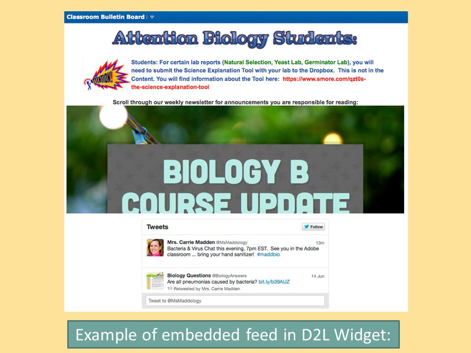 Example of embedded feed in D2L Widget: