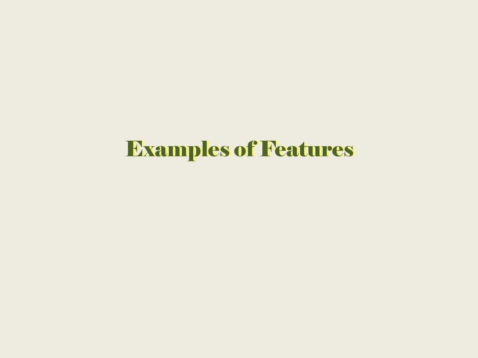 Examples of FeaturesExamples of Features