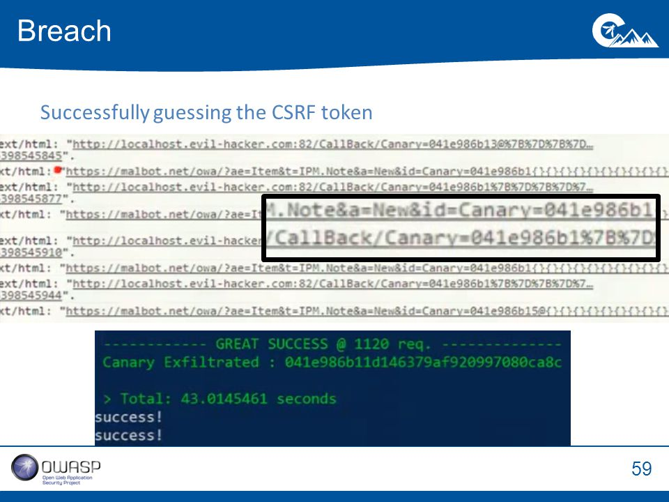 59 Successfully guessing the CSRF token Breach