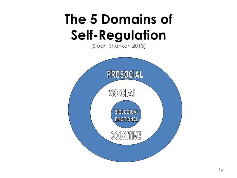 The 5 Domains of Self-Regulation (Stuart Shanker, 2013) 14