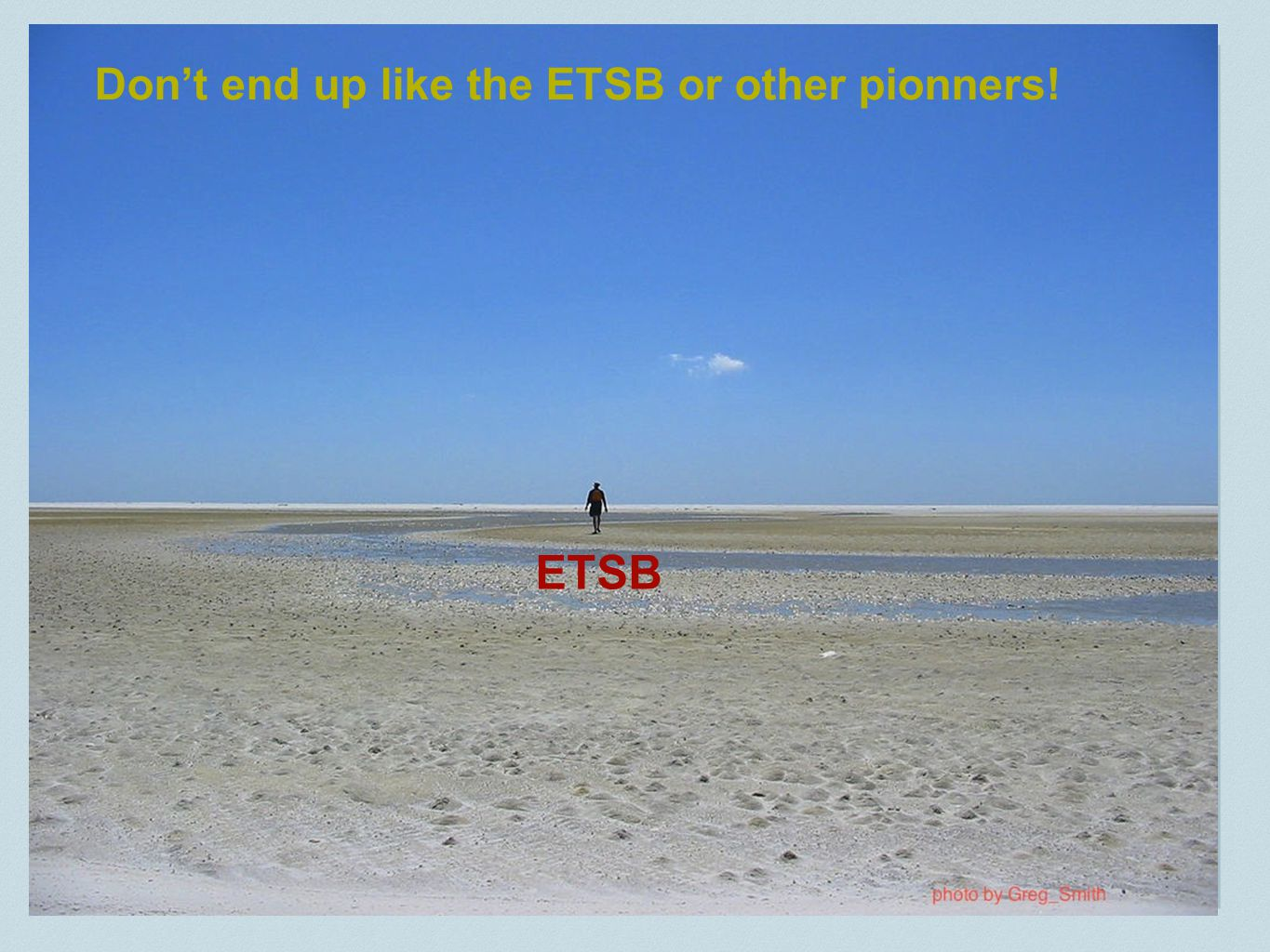 ETSB Don't end up like the ETSB or other pionners!