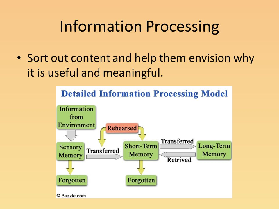 Information Processing Sort out content and help them envision why it is useful and meaningful.