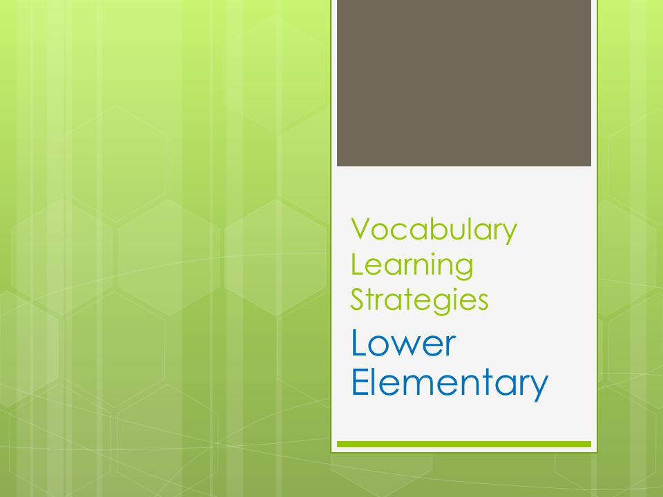 Vocabulary Learning Strategies Lower Elementary