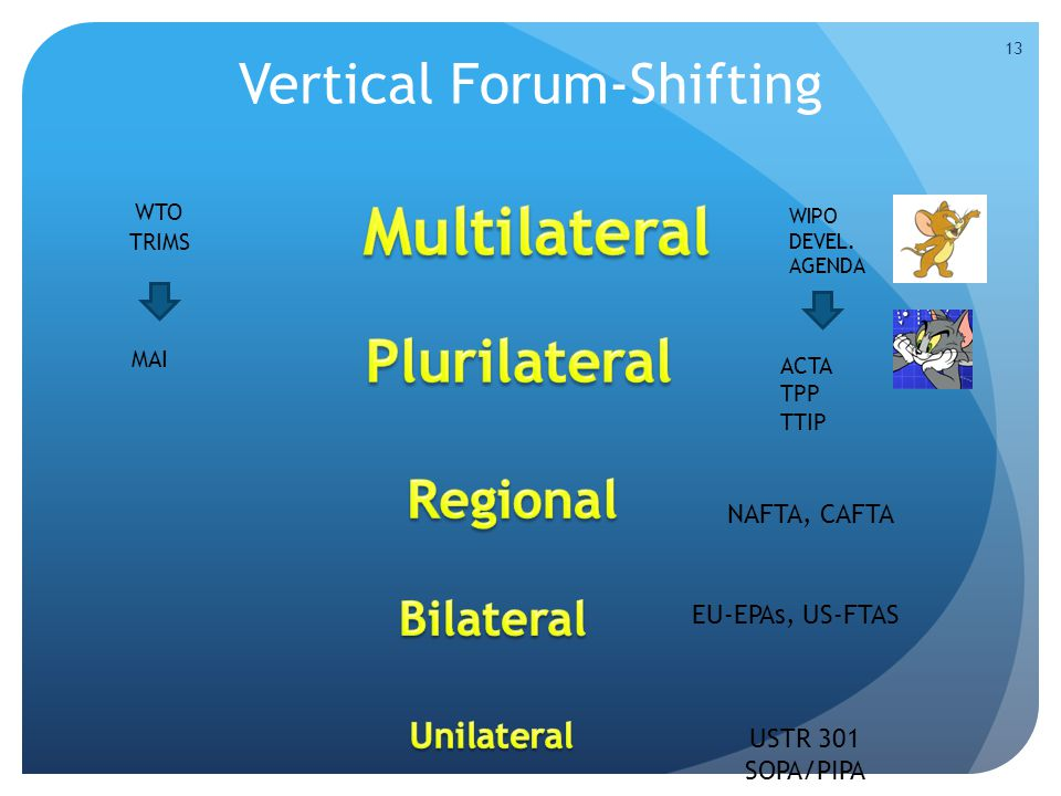 Vertical Forum-Shifting 13 WIPO DEVEL.