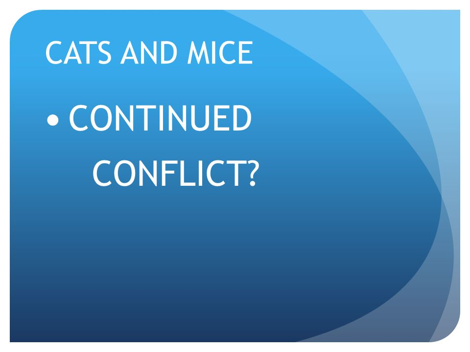 CATS AND MICE CONTINUED CONFLICT