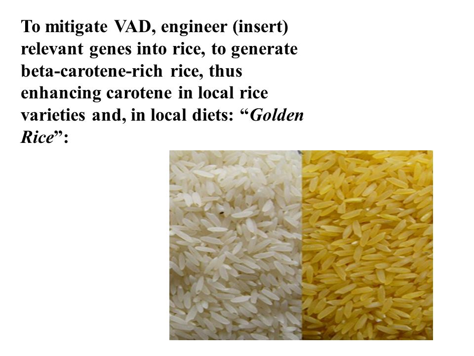 To mitigate VAD, engineer (insert) relevant genes into rice, to generate beta-carotene-rich rice, thus enhancing carotene in local rice varieties and,