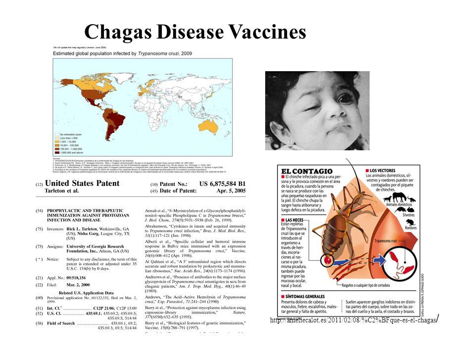 Chagas Disease Vaccines http://ameliecalot.es/2011/02/08/%C2%BFque-es-el-chagas /
