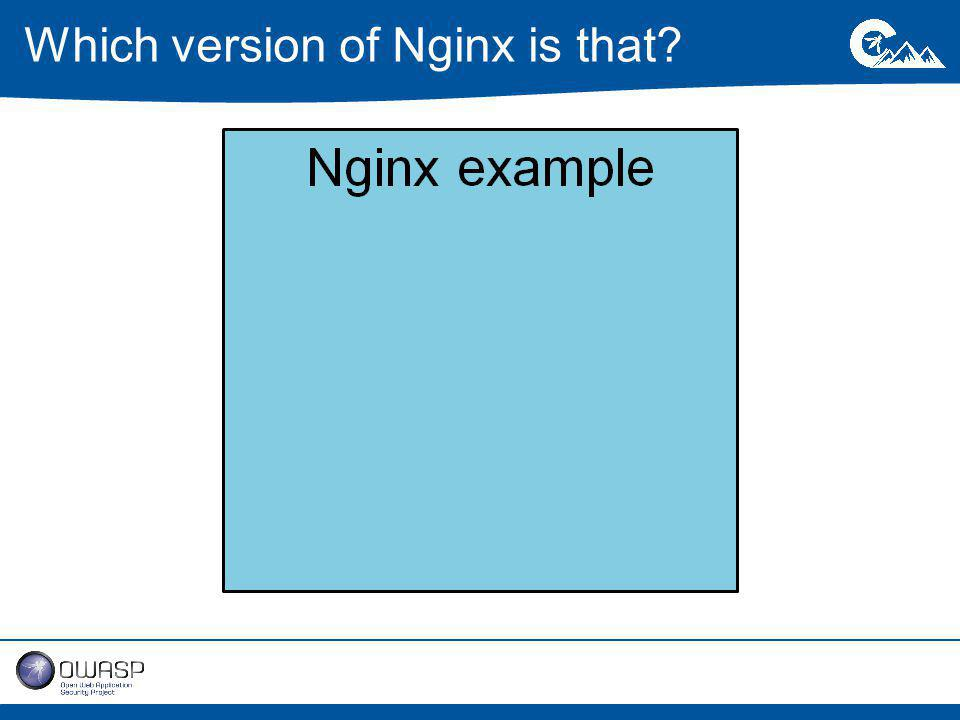 Which version of Nginx is that
