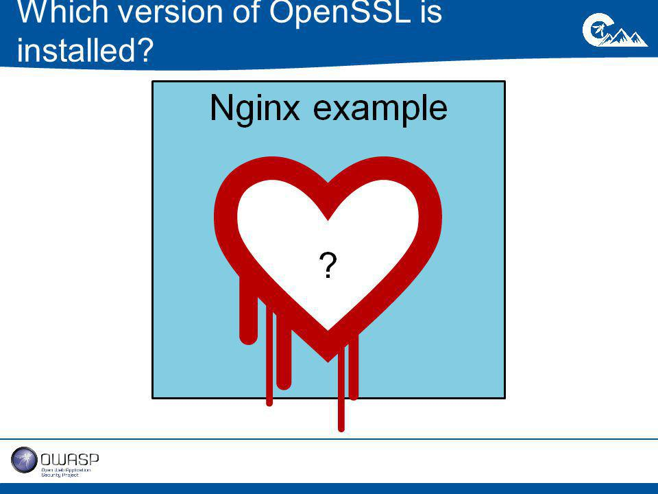 Which version of OpenSSL is installed?