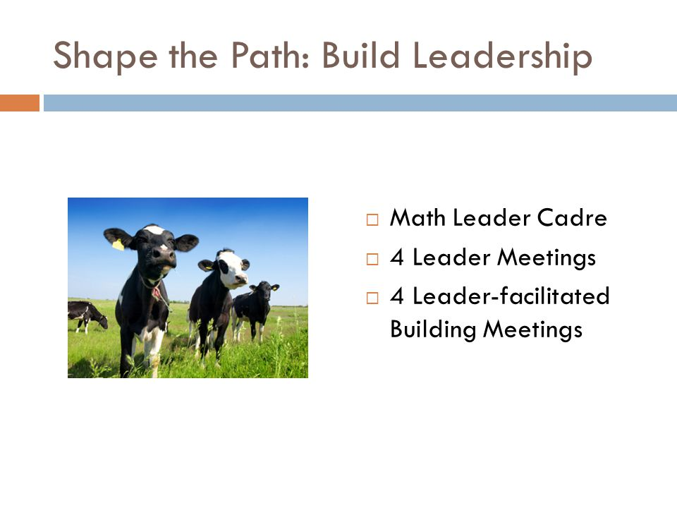 Shape the Path: Build Leadership  Math Leader Cadre  4 Leader Meetings  4 Leader-facilitated Building Meetings