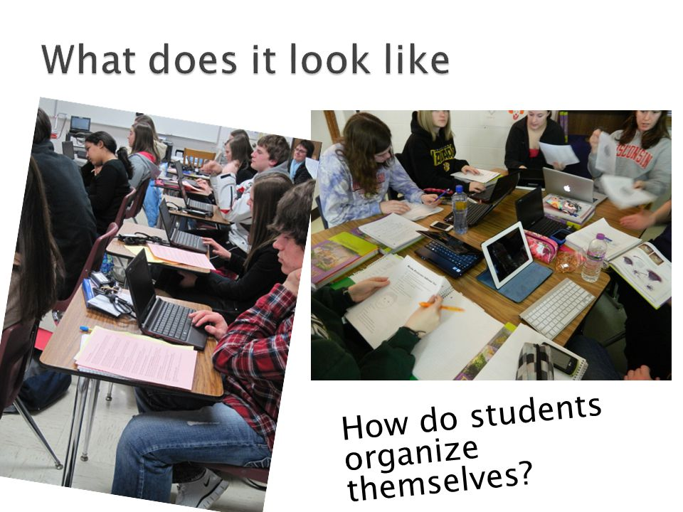 How do students organize themselves?