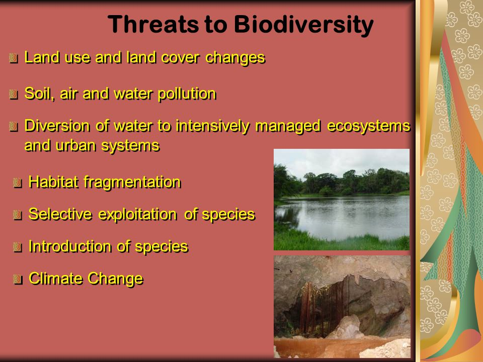 Threats to Biodiversity Land use and land cover changes Soil, air and water pollution Diversion of water to intensively managed ecosystems and urban s