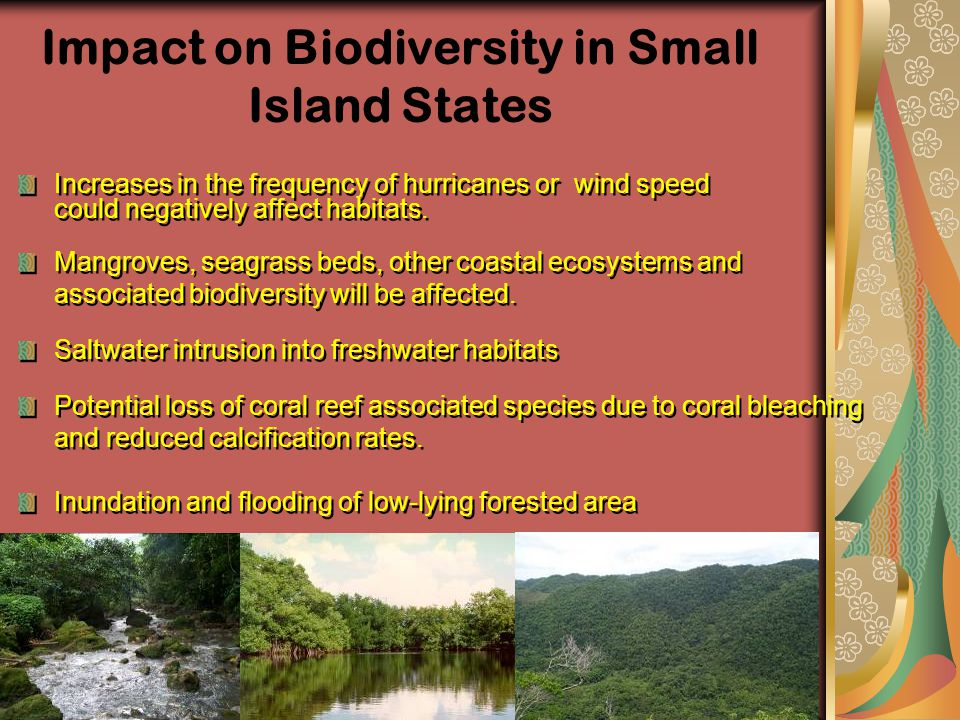 Increases in the frequency of hurricanes or wind speed could negatively affect habitats. Impact on Biodiversity in Small Island States Mangroves, seag