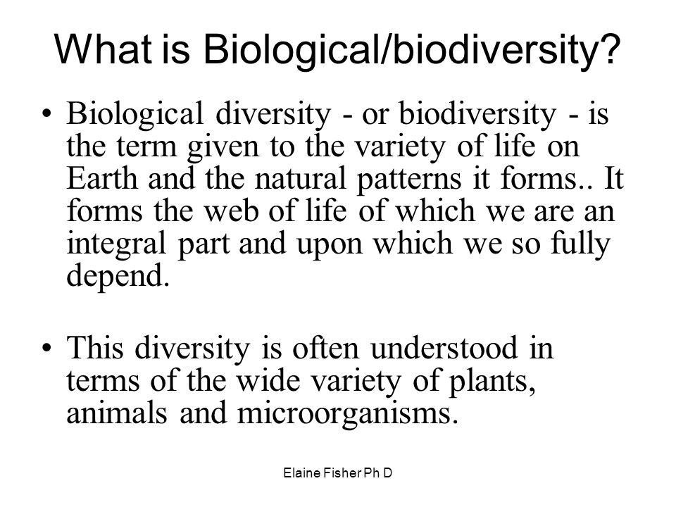 Elaine Fisher Ph D What is Biological/biodiversity? Biological diversity - or biodiversity - is the term given to the variety of life on Earth and the