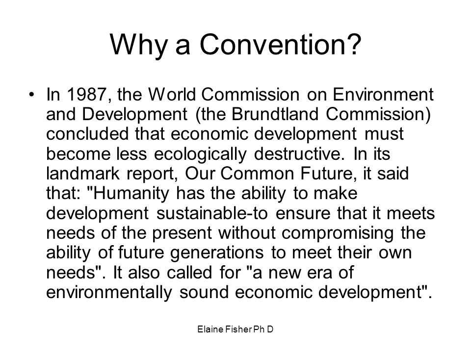 Elaine Fisher Ph D Why a Convention? In 1987, the World Commission on Environment and Development (the Brundtland Commission) concluded that economic