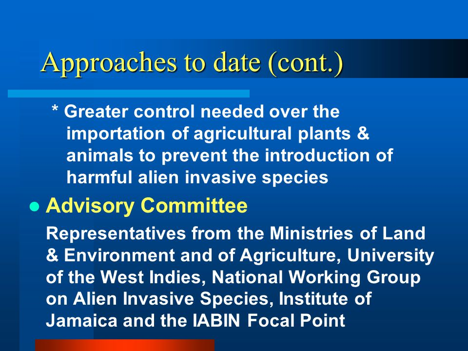 Approaches to date (cont.) * Greater control needed over the importation of agricultural plants & animals to prevent the introduction of harmful alien invasive species Advisory Committee Representatives from the Ministries of Land & Environment and of Agriculture, University of the West Indies, National Working Group on Alien Invasive Species, Institute of Jamaica and the IABIN Focal Point