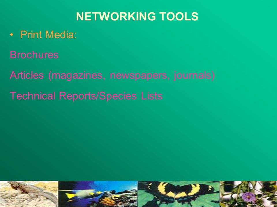 NETWORKING TOOLS Print Media: Brochures Articles (magazines, newspapers, journals) Technical Reports/Species Lists