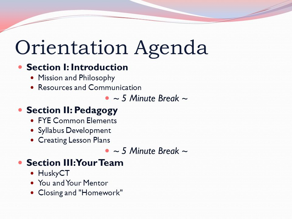 Orientation Agenda Section I: Introduction Mission and Philosophy Resources and Communication ~ 5 Minute Break ~ Section II: Pedagogy FYE Common Elements Syllabus Development Creating Lesson Plans ~ 5 Minute Break ~ Section III: Your Team HuskyCT You and Your Mentor Closing and Homework