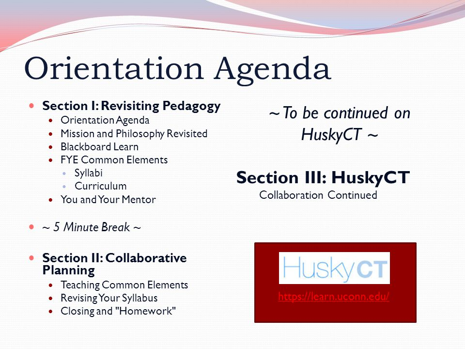 Orientation Agenda Section I: Revisiting Pedagogy Orientation Agenda Mission and Philosophy Revisited Blackboard Learn FYE Common Elements Syllabi Curriculum You and Your Mentor ~ 5 Minute Break ~ Section II: Collaborative Planning Teaching Common Elements Revising Your Syllabus Closing and Homework ~ To be continued on HuskyCT ~ Section III: HuskyCT Collaboration Continued https://learn.uconn.edu/