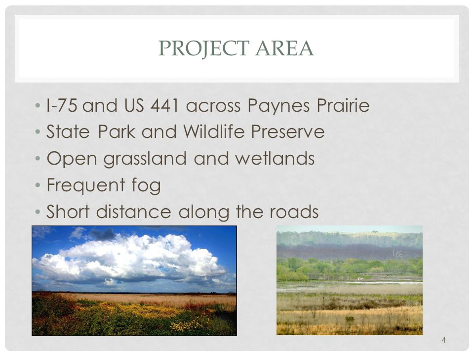 PROJECT AREA I-75 and US 441 across Paynes Prairie State Park and Wildlife Preserve Open grassland and wetlands Frequent fog Short distance along the