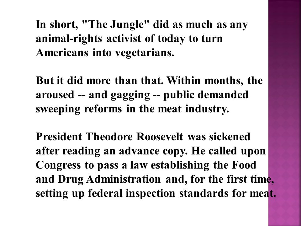In short, The Jungle did as much as any animal-rights activist of today to turn Americans into vegetarians.