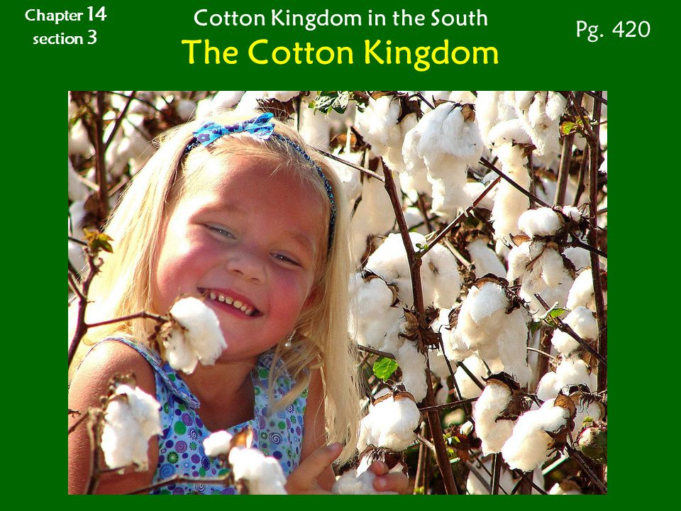 Chapter 14 section 3 Cotton Kingdom in the South The Cotton Kingdom Pg. 420