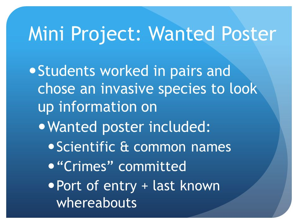 Mini Project: Wanted Poster Students worked in pairs and chose an invasive species to look up information on Wanted poster included: Scientific & comm