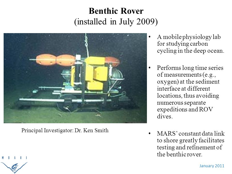January 2011 Benthic Rover (installed in July 2009) Principal Investigator: Dr.