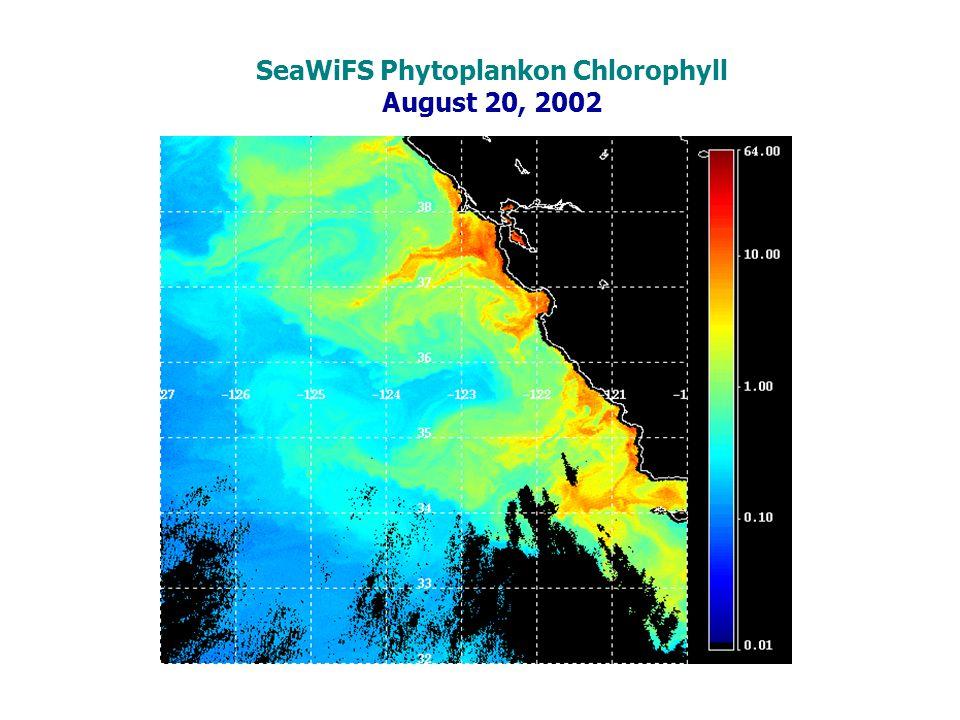 SeaWiFS Phytoplankon Chlorophyll August 20, 2002