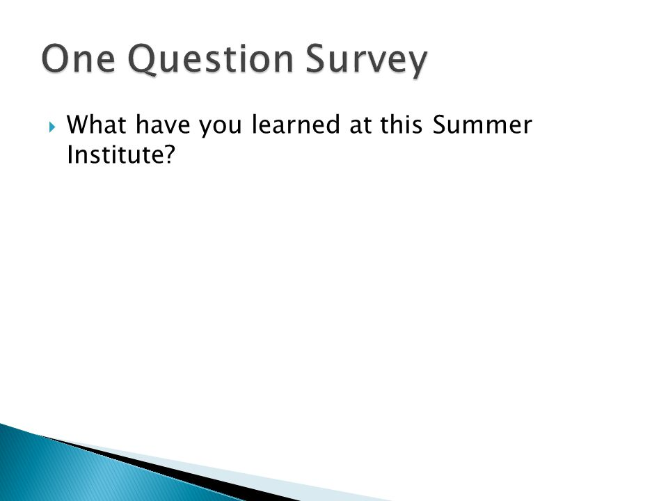  What have you learned at this Summer Institute?
