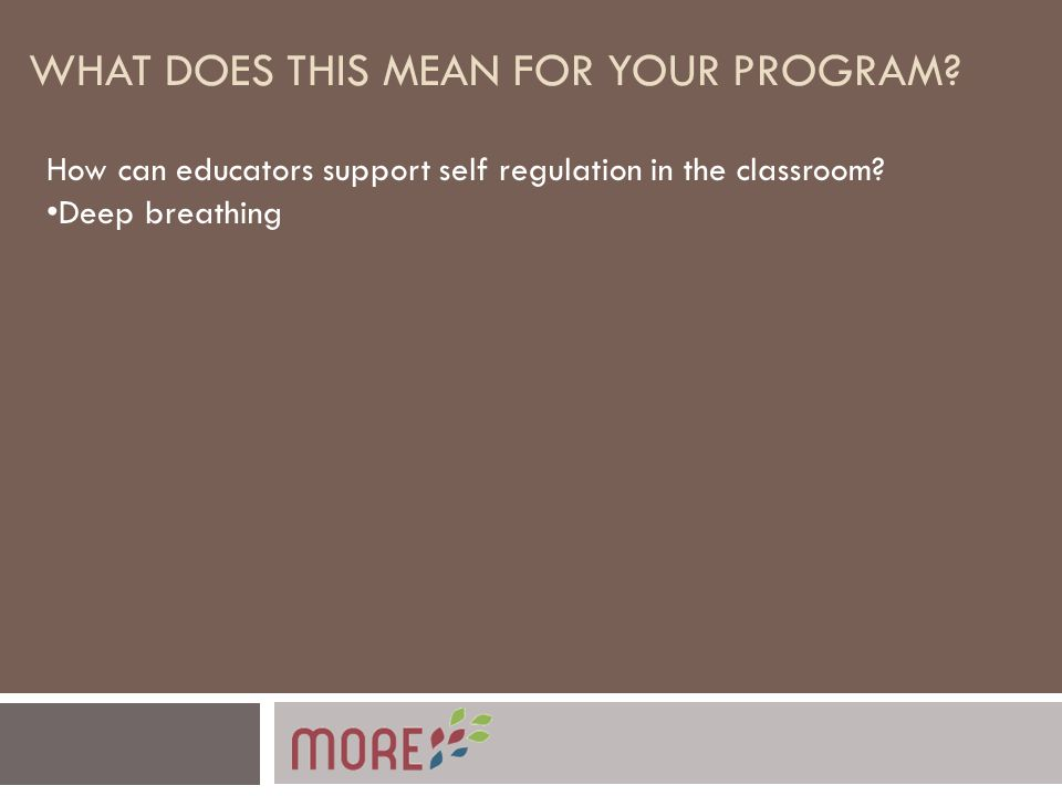 WHAT DOES THIS MEAN FOR YOUR PROGRAM. How can educators support self regulation in the classroom.