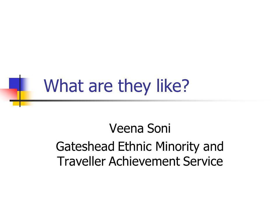 What are they like? Veena Soni Gateshead Ethnic Minority and Traveller Achievement Service