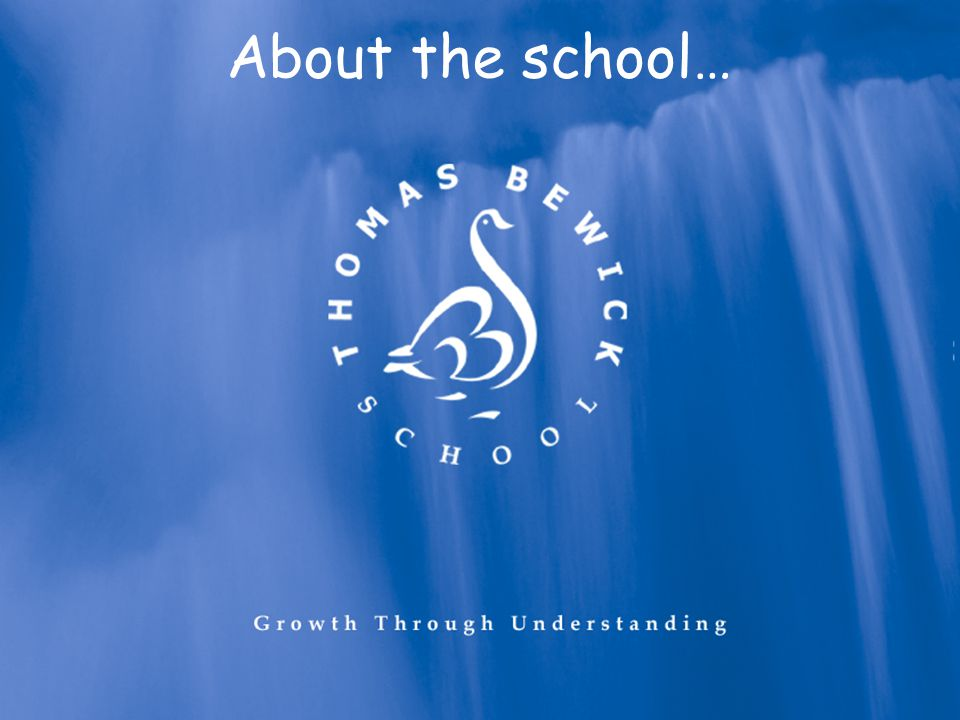 About the school…