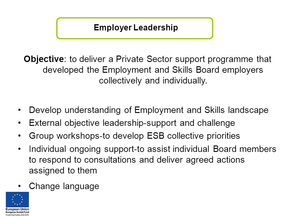 Employer Leadership Objective: to deliver a Private Sector support programme that developed the Employment and Skills Board employers collectively and individually.