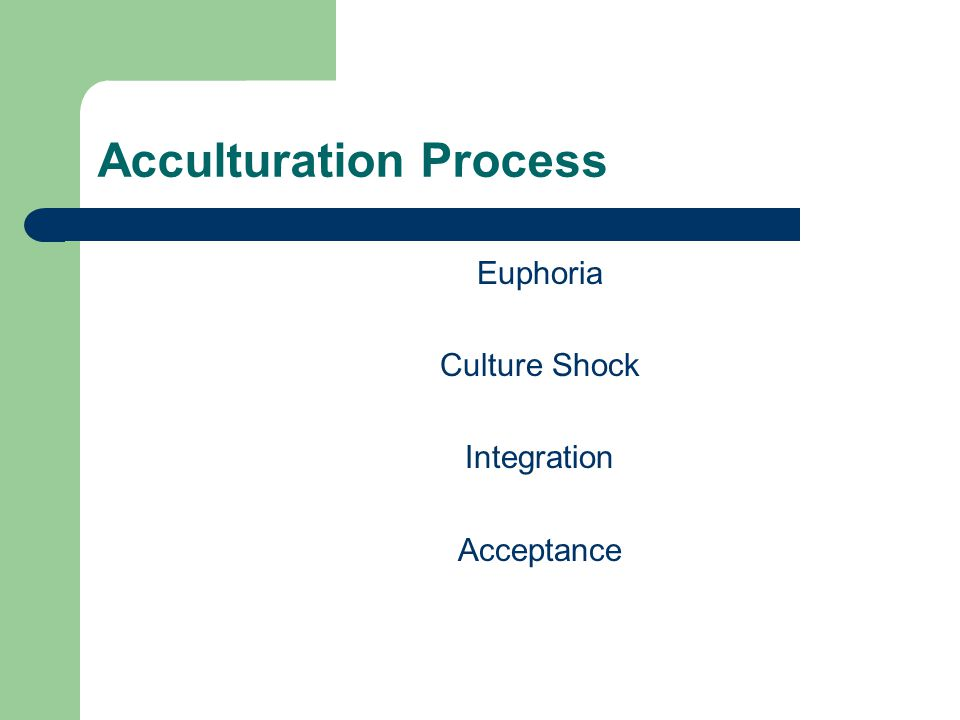 Acculturation Process Euphoria Culture Shock Integration Acceptance