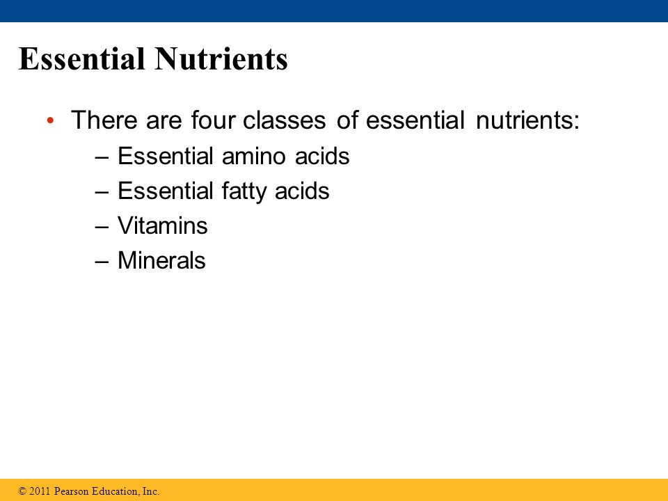 Essential Nutrients There are four classes of essential nutrients: –Essential amino acids –Essential fatty acids –Vitamins –Minerals © 2011 Pearson Education, Inc.