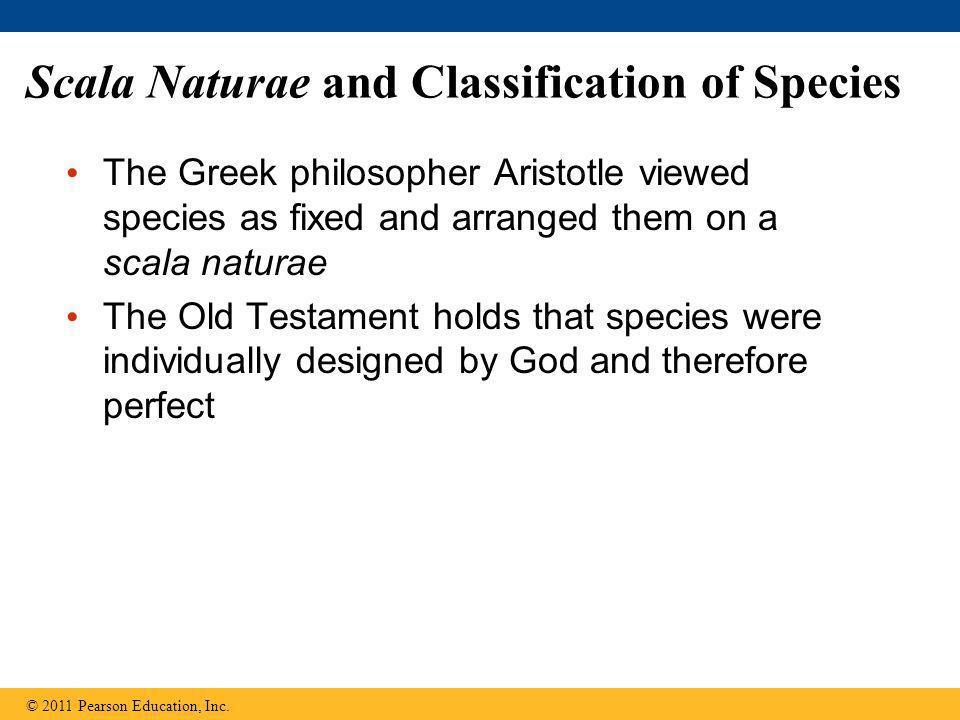 Scala Naturae and Classification of Species The Greek philosopher Aristotle viewed species as fixed and arranged them on a scala naturae The Old Testa