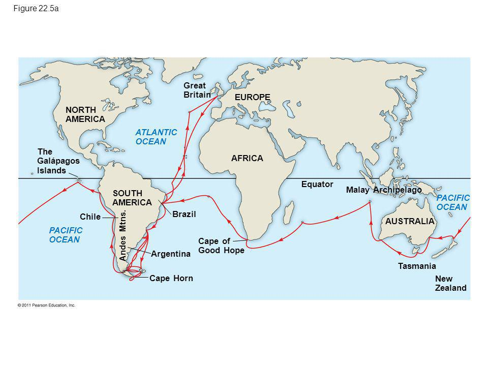 Figure 22.5a The Galápagos Islands NORTH AMERICA ATLANTIC OCEAN Chile SOUTH AMERICA AFRICA EUROPE Great Britain Equator PACIFIC OCEAN Malay Archipelag