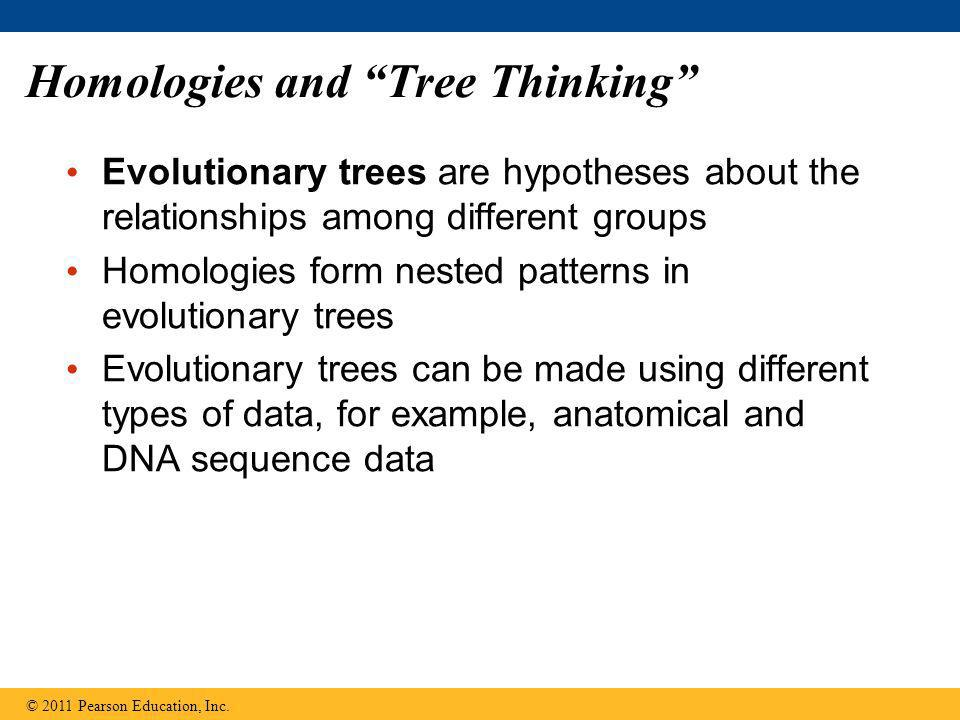 "Homologies and ""Tree Thinking"" Evolutionary trees are hypotheses about the relationships among different groups Homologies form nested patterns in evo"