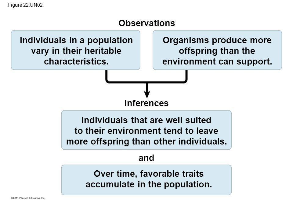 Figure 22.UN02 Observations Individuals in a population vary in their heritable characteristics. Organisms produce more offspring than the environment