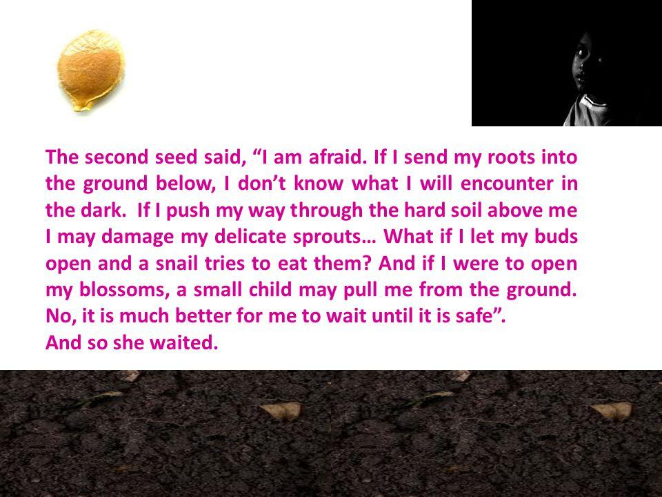 The second seed said, I am afraid.