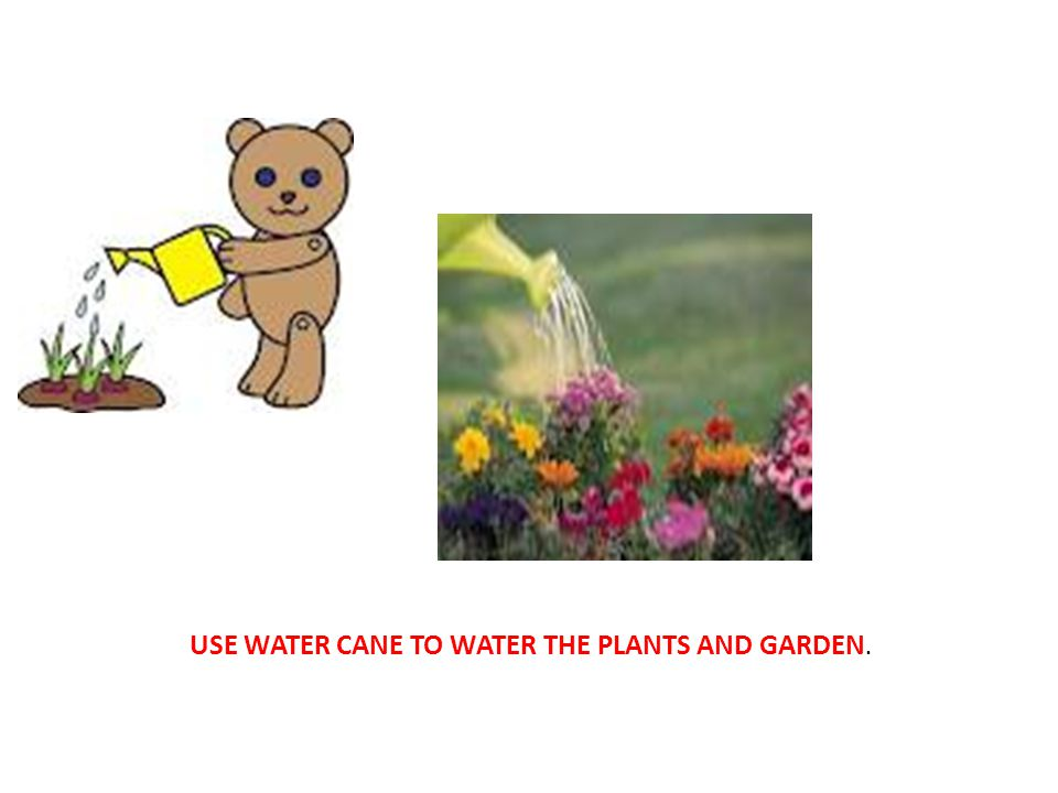 USE WATER CANE TO WATER THE PLANTS AND GARDEN.