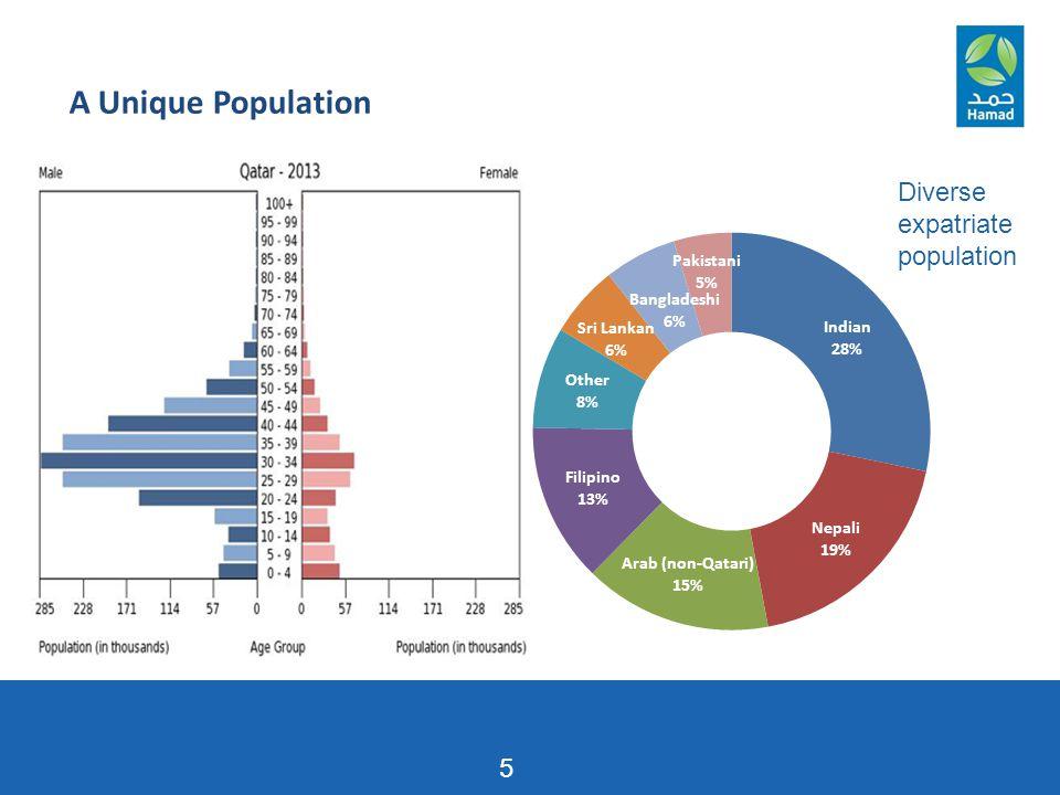 A Unique Population 5 Diverse expatriate population 5