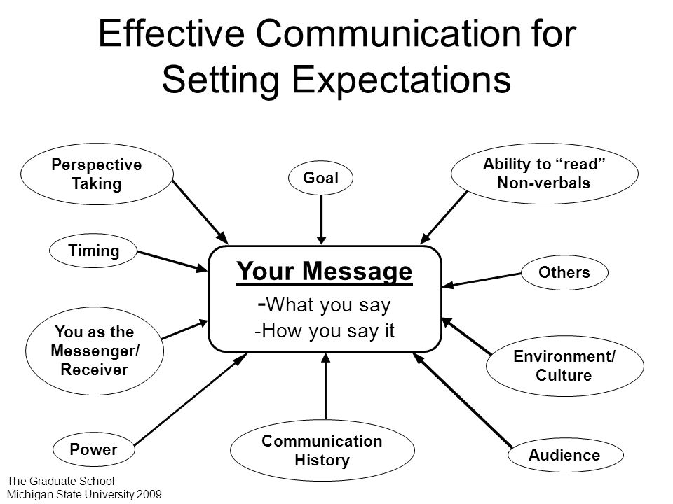 Effective Communication for Setting Expectations Audience You as the Messenger/ Receiver Timing Goal Power Ability to read Non-verbals Communication History Environment/ Culture Perspective Taking Others Your Message - What you say -How you say it The Graduate School Michigan State University 2009