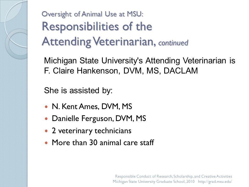 Oversight of Animal Use at MSU: Responsibilities of the Attending Veterinarian, continued N.