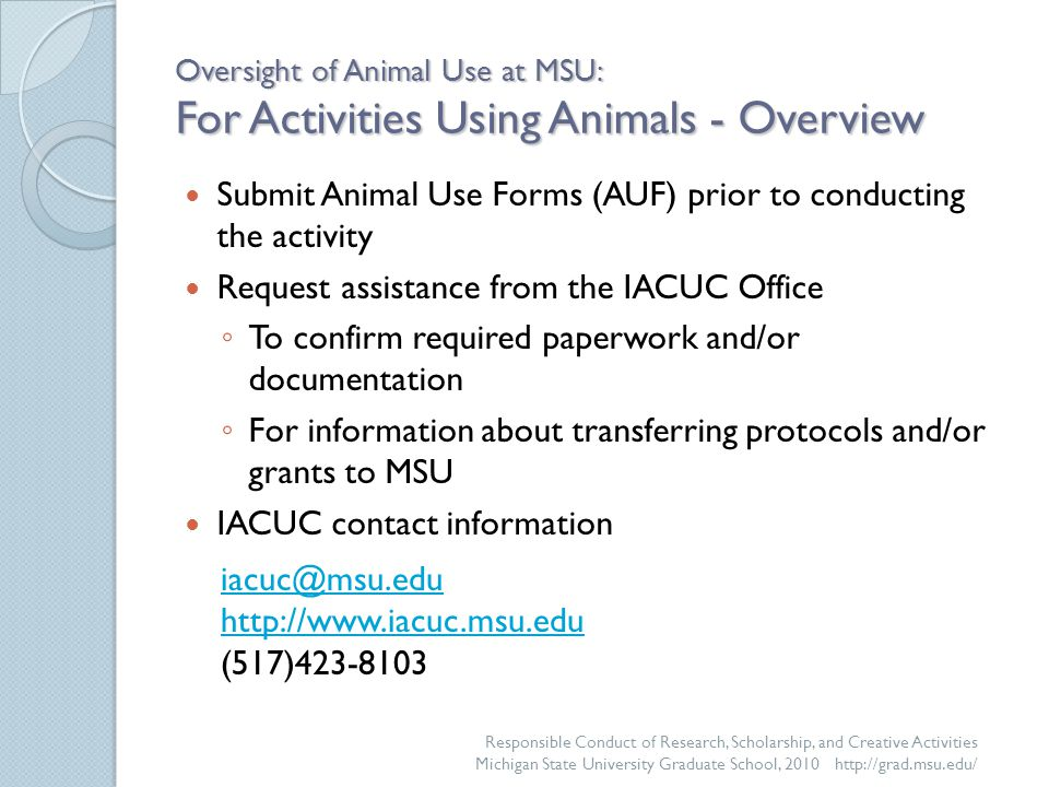 Oversight of Animal Use at MSU: For Activities Using Animals - Overview Submit Animal Use Forms (AUF) prior to conducting the activity Request assistance from the IACUC Office ◦ To confirm required paperwork and/or documentation ◦ For information about transferring protocols and/or grants to MSU IACUC contact information Responsible Conduct of Research, Scholarship, and Creative Activities Michigan State University Graduate School, 2010 http://grad.msu.edu/ iacuc@msu.edu http://www.iacuc.msu.edu (517)423-8103