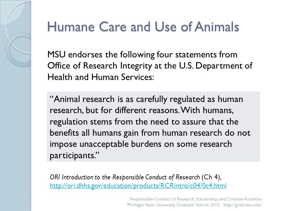 Oversight of Animal Use at MSU: Responsibilities of Scientists, continued Reduce … the number of animals used in research Refine … the endpoints and procedures of the experiment to eliminate and/or alleviate pain and distress Replace … animals with non-animal models whenever possible Responsible Conduct of Research, Scholarship, and Creative Activities Michigan State University Graduate School, 2010 http://grad.msu.edu/ When considering your use of animals, remember to apply the 3 Rs: