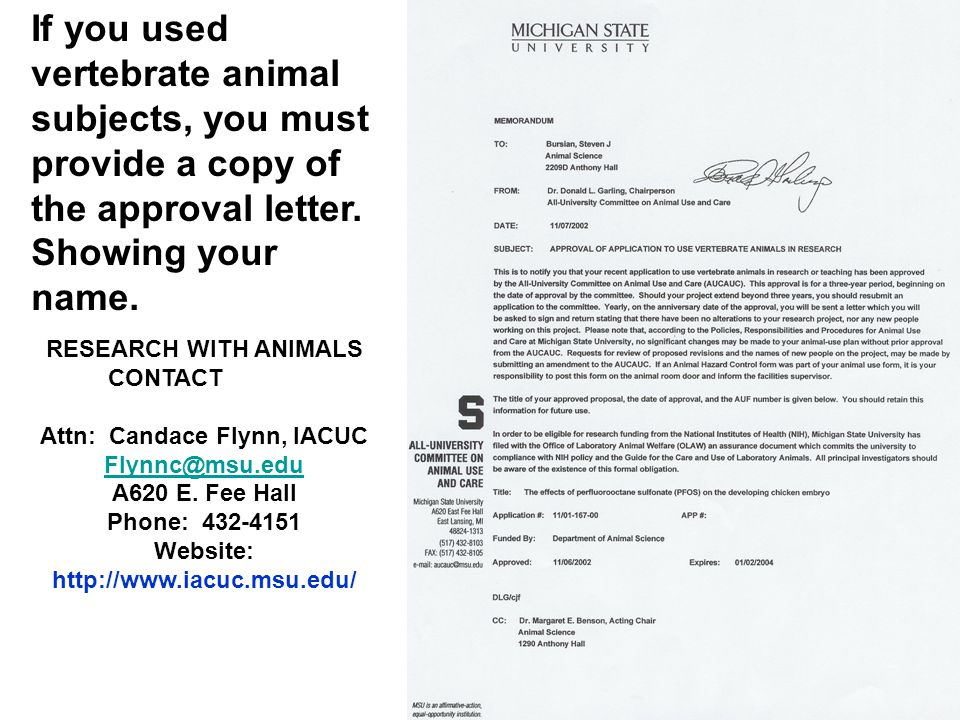 If you used vertebrate animal subjects, you must provide a copy of the approval letter. Showing your name. RESEARCH WITH ANIMALS CONTACT Attn: Candace