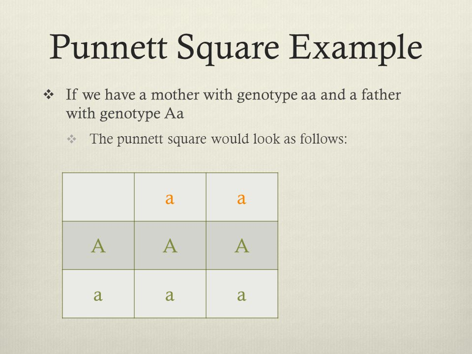 Punnett Square Example  If we have a mother with genotype aa and a father with genotype Aa  The punnett square would look as follows: aa AAA aaa